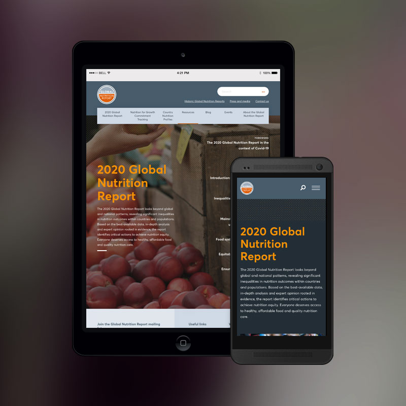 Global Nutrition Report website